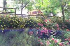 Giardino B&B Il Fienile di Scarperia